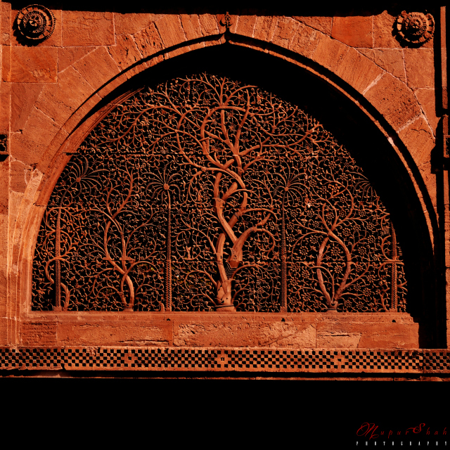 Sidi Saiyyed Mosque in Ahmedabad | Photo © Nupur Shah